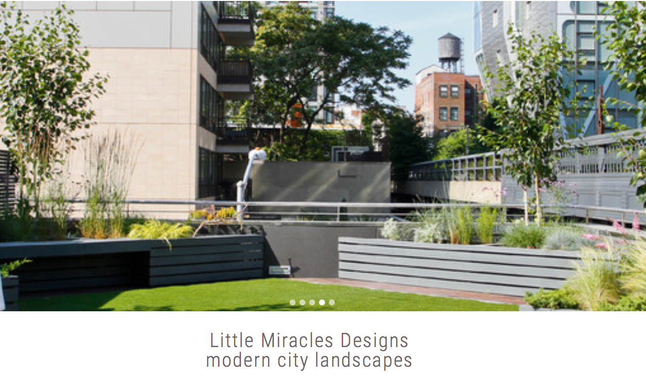 LITTLE MIRACLES DESIGNS